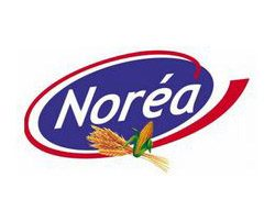 NOREA